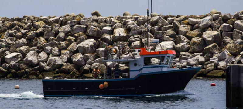 (Português) Dever de Prestar Assistência no Mar