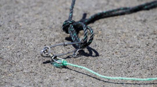Regime Jurídico da Pesca Lúdica
